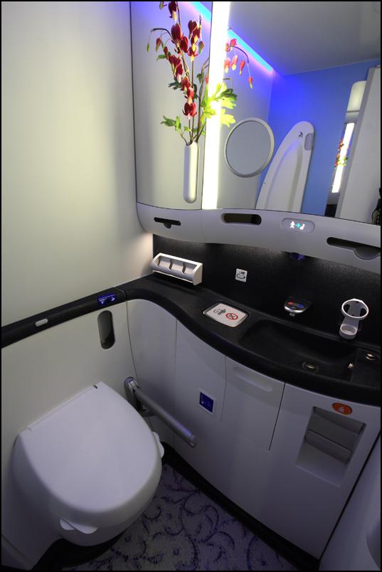 Bathroom aboard the 787. Photo by Jeremy Lindgren