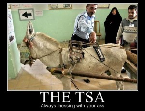 Taken from Page 2 int he leaked TSA manual.