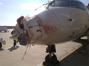 Atlantic Southeast Airlines CRJ-200 bird strike